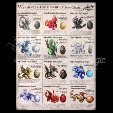 Wyrmling & Egg Identification Chart Canvas