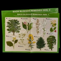 Bach Bloesem Remedies Centerfold Posterset