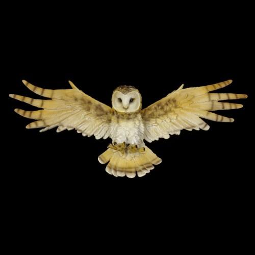 Beeld Wisdom Flight