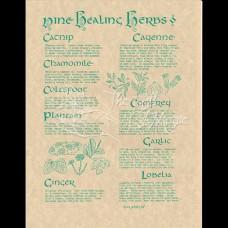 Nine Healing Herbs Mini-Poster