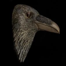 Grote Ravenkop voor aan de Muur