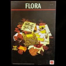 Flora Bloemendroog Kit