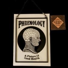 Raamhanger Phrenology
