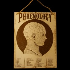 Bordje Phrenology