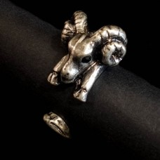 Ring Ram